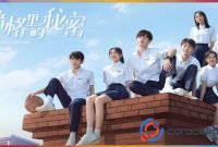 Download Drama China Our Secret